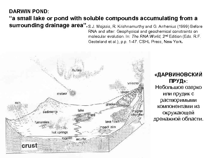 "DARWIN POND: ""a small lake or pond with soluble compounds accumulating from a surrounding"