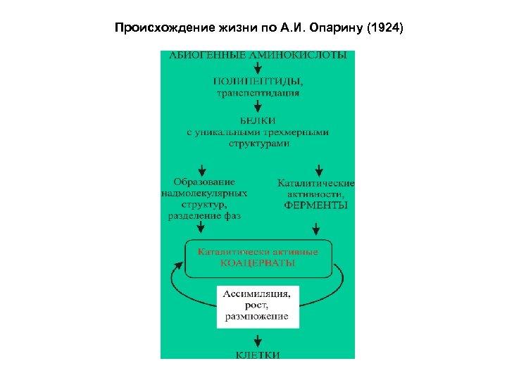Происхождение жизни по А. И. Опарину (1924)
