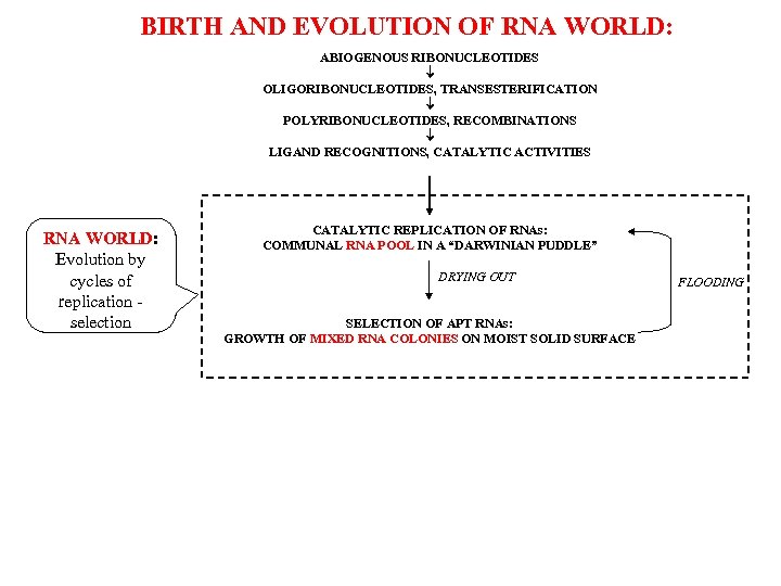 BIRTH AND EVOLUTION OF RNA WORLD: ABIOGENOUS RIBONUCLEOTIDES OLIGORIBONUCLEOTIDES, TRANSESTERIFICATION POLYRIBONUCLEOTIDES, RECOMBINATIONS LIGAND RECOGNITIONS,
