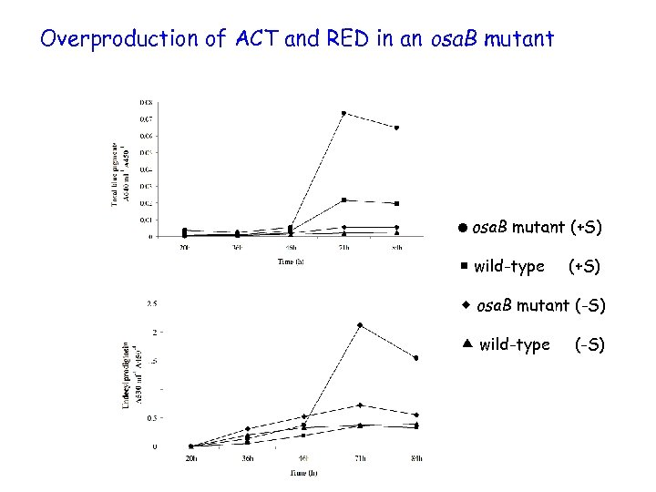 Overproduction of ACT and RED in an osa. B mutant =osa. B mutant (+S)