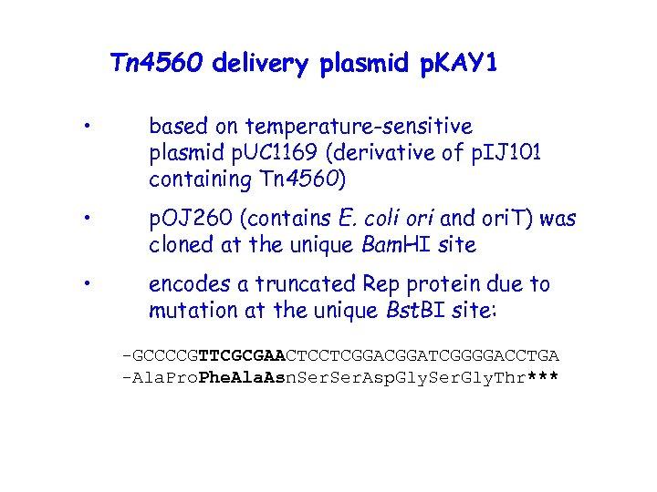 Tn 4560 delivery plasmid p. KAY 1 • based on temperature-sensitive plasmid p. UC