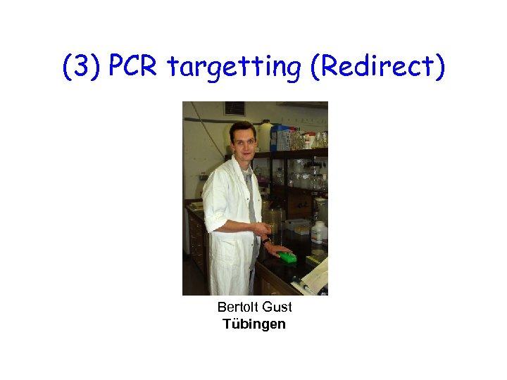 (3) PCR targetting (Redirect) Bertolt Gust Tübingen