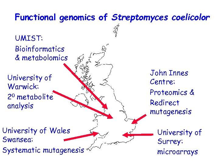 Functional genomics of Streptomyces coelicolor UMIST: Bioinformatics & metabolomics University of Warwick: 20 metabolite