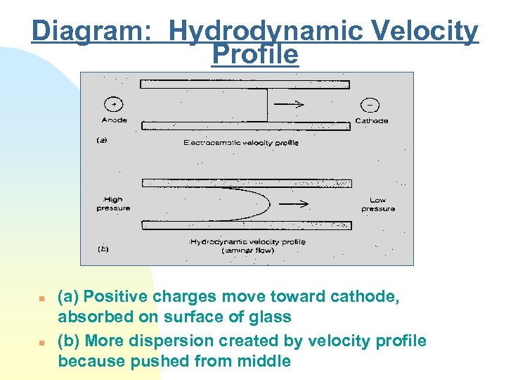 Diagram: Hydrodynamic Velocity Profile n n (a) Positive charges move toward cathode, absorbed on