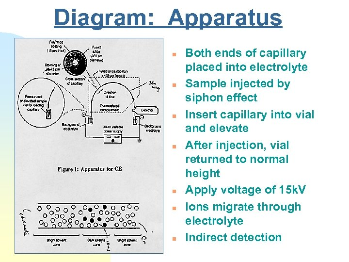 Diagram: Apparatus n n n n Both ends of capillary placed into electrolyte Sample