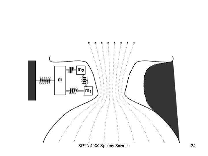 SPPA 4030 Speech Science 24