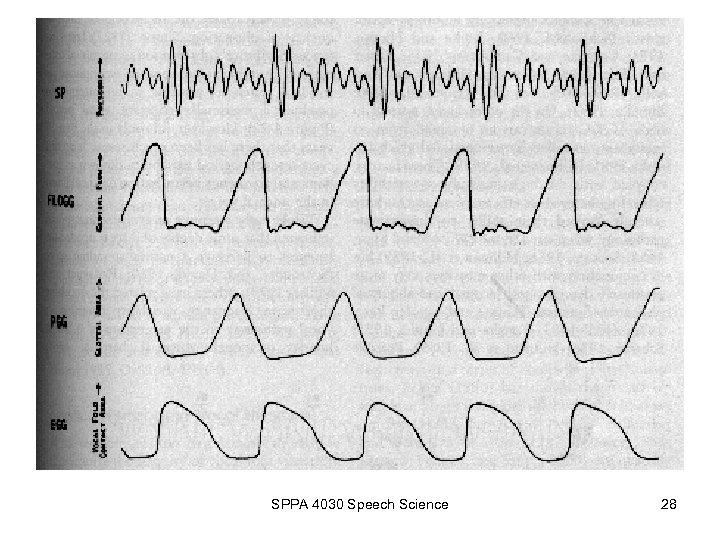 SPPA 4030 Speech Science 28