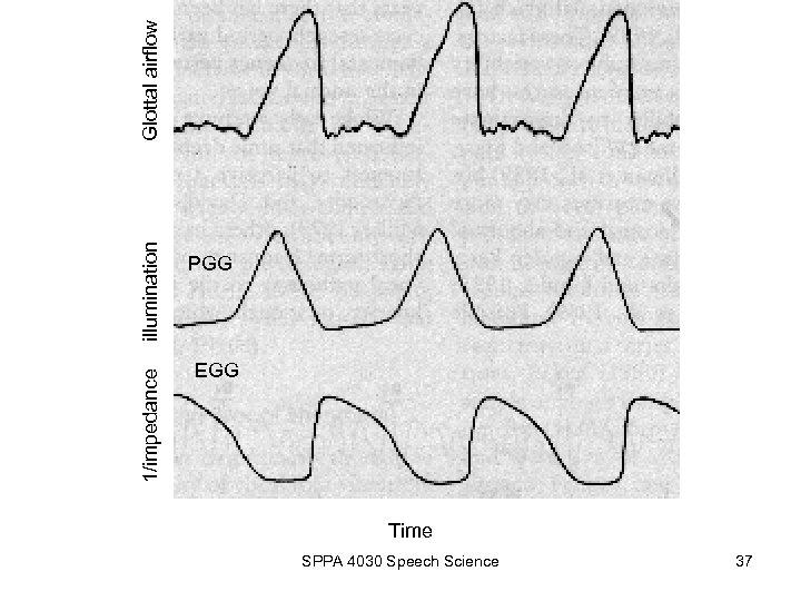 1/impedance illumination PGG EGG Time SPPA 4030 Speech Science 37 Glottal airflow