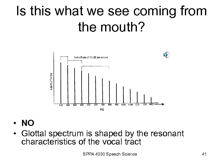 Is this what we see coming from the mouth? • NO • Glottal spectrum