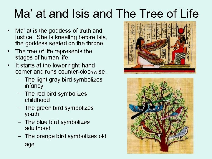 Ma' at and Isis and The Tree of Life • Ma' at is the