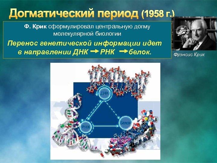 Догматический период (1958 г. ) Ф. Крик сформулировал центральную догму молекулярной биологии Перенос генетической
