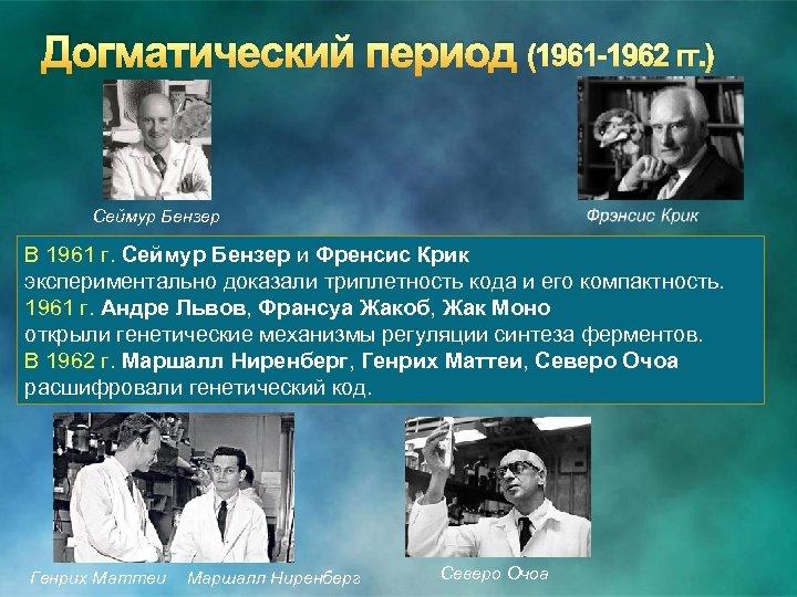 Догматический период (1961 -1962 гг. ) Сеймур Бензер В 1961 г. Сеймур Бензер и