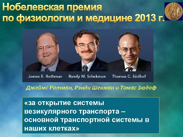 Нобелевская премия по физиологии и медицине 2013 г. Джеймс Ротман, Рэнди Шекман и Томас
