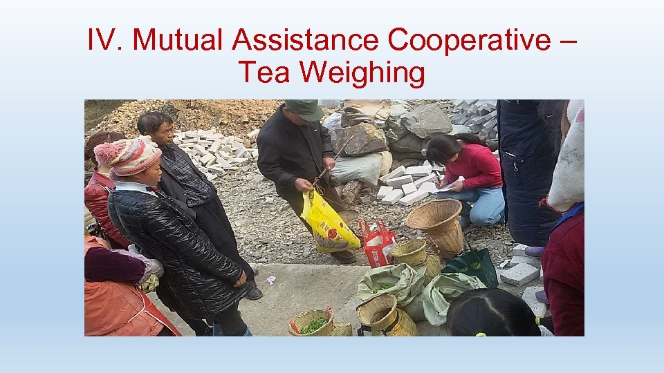 IV. Mutual Assistance Cooperative – Tea Weighing