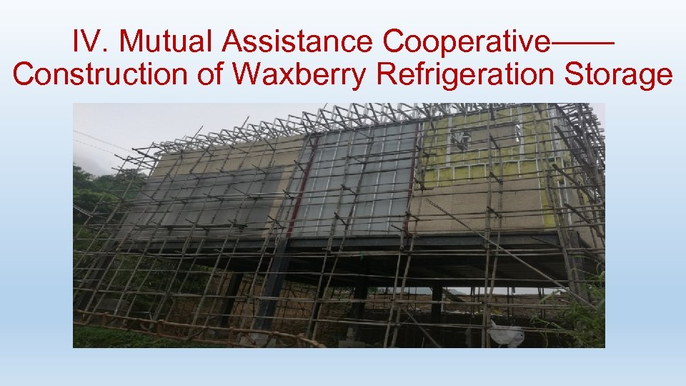 IV. Mutual Assistance Cooperative—— Construction of Waxberry Refrigeration Storage
