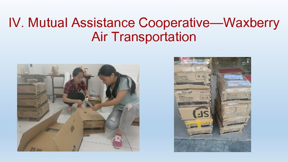 IV. Mutual Assistance Cooperative—Waxberry Air Transportation