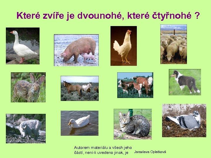 Které zvíře je dvounohé, které čtyřnohé ? Autorem materiálu a všech jeho částí, není-li