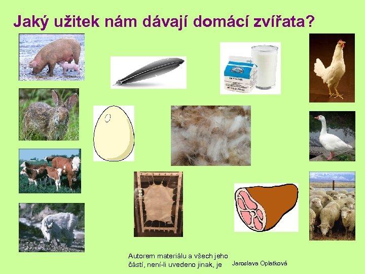 Jaký užitek nám dávají domácí zvířata? Autorem materiálu a všech jeho částí, není-li uvedeno
