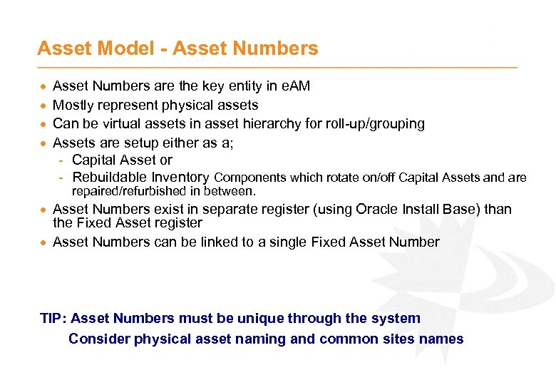 Asset Model - Asset Numbers · · Asset Numbers are the key entity in