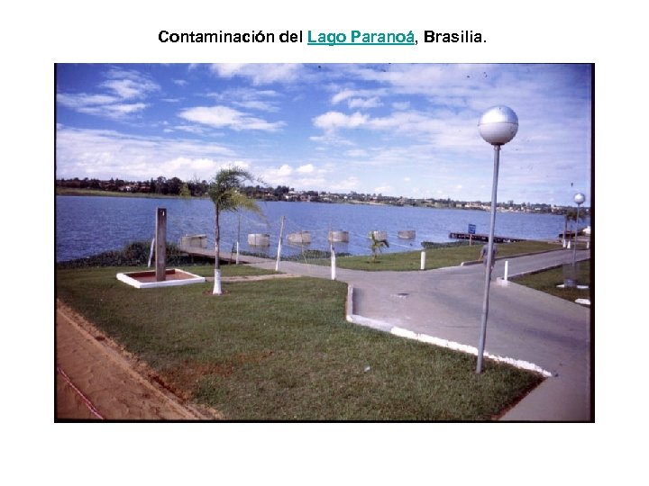 Contaminación del Lago Paranoá, Brasilia.