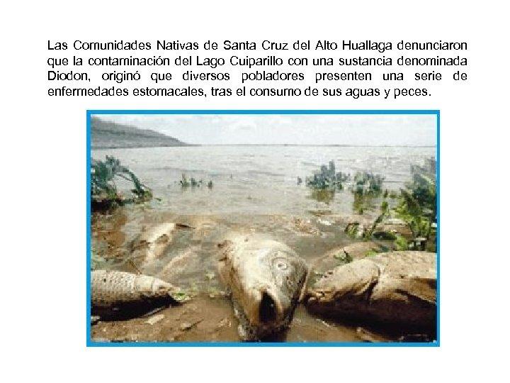 Las Comunidades Nativas de Santa Cruz del Alto Huallaga denunciaron que la contaminación del