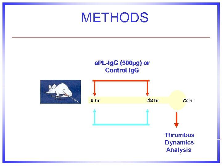 METHODS a. PL-Ig. G (500µg) or Control Ig. G 0 hr 48 hr 72