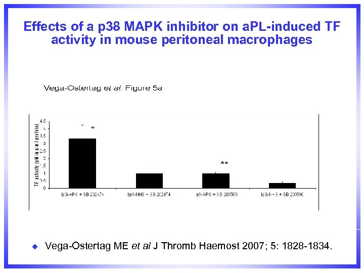 Effects of a p 38 MAPK inhibitor on a. PL-induced TF activity in mouse