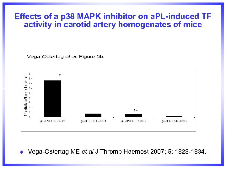 Effects of a p 38 MAPK inhibitor on a. PL-induced TF activity in carotid