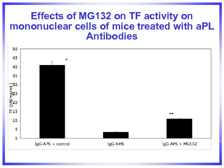 Effects of MG 132 on TF activity on mononuclear cells of mice treated with
