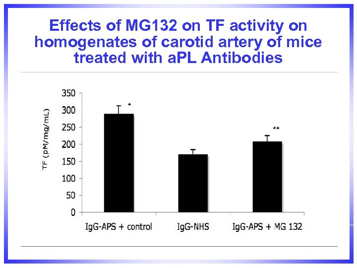 Effects of MG 132 on TF activity on homogenates of carotid artery of mice