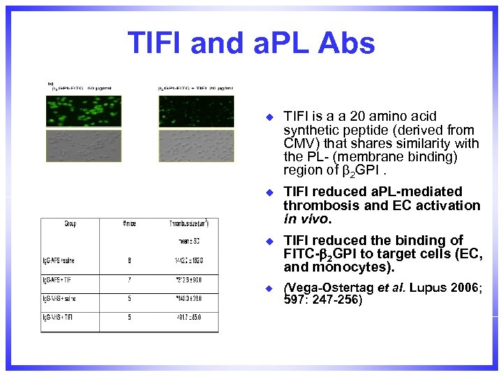 TIFI and a. PL Abs u TIFI is a a 20 amino acid synthetic