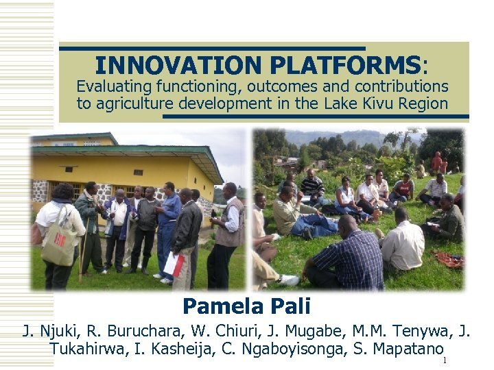 INNOVATION PLATFORMS: Evaluating functioning, outcomes and contributions to agriculture development in the Lake Kivu