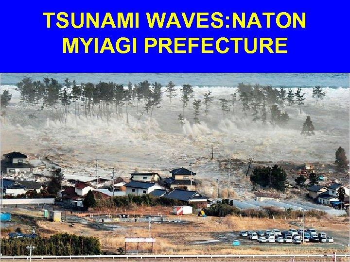TSUNAMI WAVES: NATON MYIAGI PREFECTURE