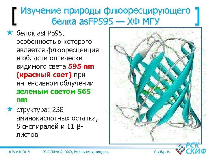 Изучение природы флюоресцирующего белка as. FP 595 — ХФ МГУ белок as. FP 595,