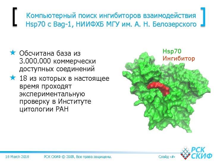 Компьютерный поиск ингибиторов взаимодействия Hsp 70 c Bag-1, НИИФХБ МГУ им. А. Н. Белозерского