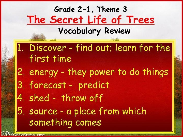 Grade 2 -1, Theme 3 The Secret Life of Trees Vocabulary Review 1. Discover