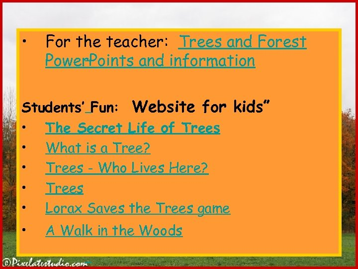 • For the teacher: Trees and Forest Power. Points and information Students' Fun: