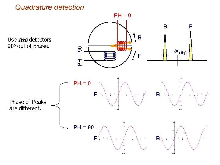 Quadrature detection PH = 0 B B PH = 90 Use two detectors 90