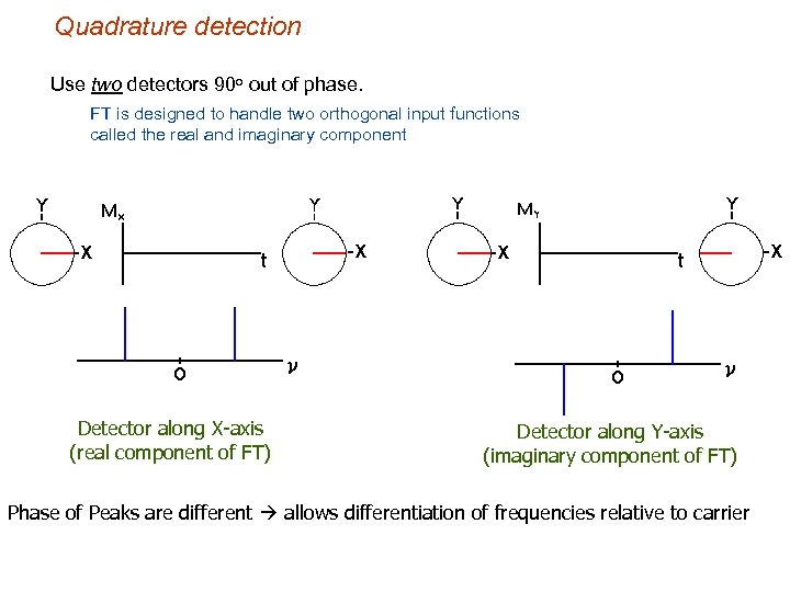 Quadrature detection Use two detectors 90 o out of phase. FT is designed to