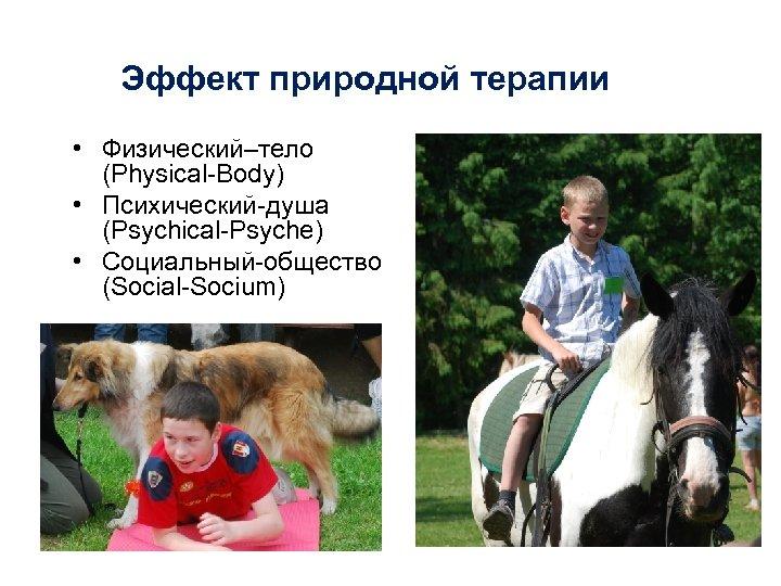 Эффект природной терапии • Физический–тело (Physical-Body) • Психический-душа (Psychical-Psyche) • Социальный-общество (Social-Socium)