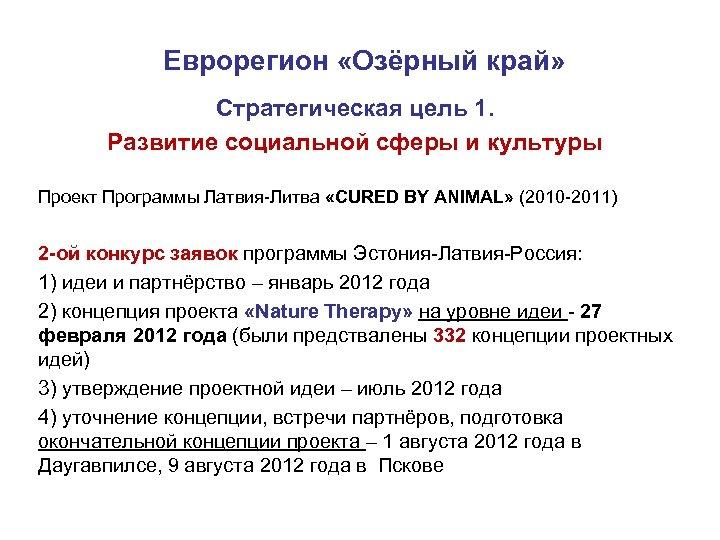 Еврорегион «Озёрный край» Стратегическая цель 1. Развитие социальной сферы и культуры Проект Программы