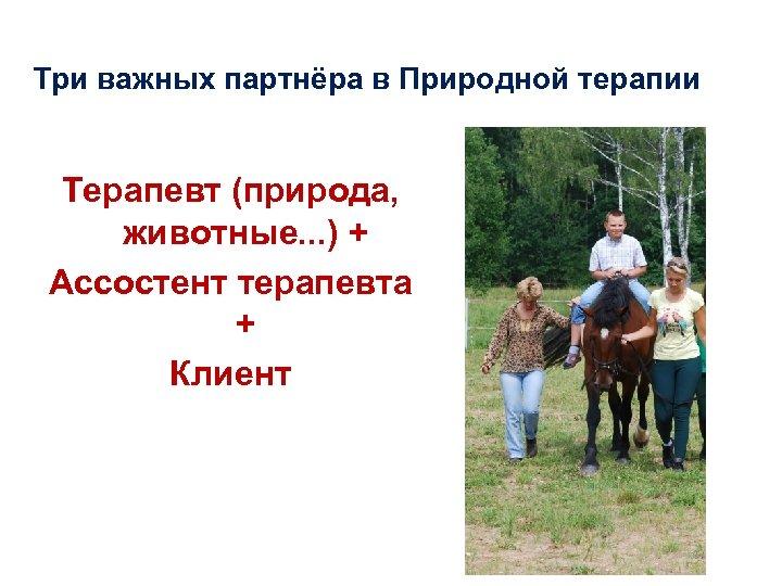 Три важных партнёра в Природной терапии Терапевт (природа, животные. . . ) + Ассостент