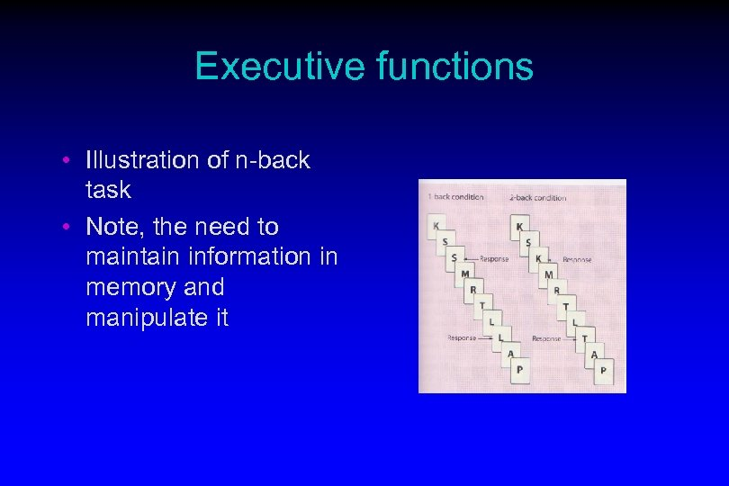 Executive functions • Illustration of n-back task • Note, the need to maintain information
