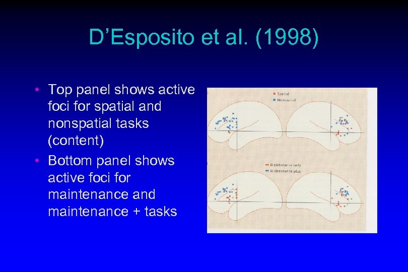 D'Esposito et al. (1998) • Top panel shows active foci for spatial and nonspatial