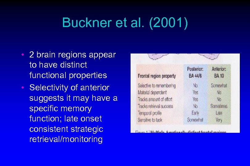 Buckner et al. (2001) • 2 brain regions appear to have distinct functional properties