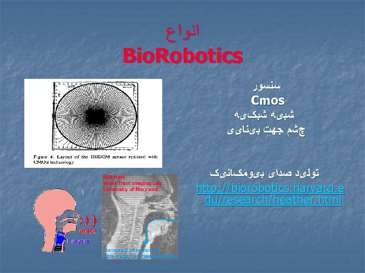 ﺍﻧﻮﺍﻉ Bio. Robotics ﺳﻨﺴﻮﺭ Cmos ﺷﺒیﻪ ﺷﺒکیﻪ چﺸﻢ ﺟﻬﺖ ﺑیﻨﺎیی ﺗﻮﻟیﺪ ﺻﺪﺍی ﺑیﻮﻣکﺎﻧیک