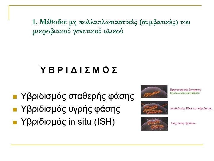1. Μέθοδοι μη πολλαπλασιαστικές (συμβατικές) του μικροβιακού γενετικού υλικού ΥΒΡΙΔΙΣΜΟΣ n n n Υβριδισμός