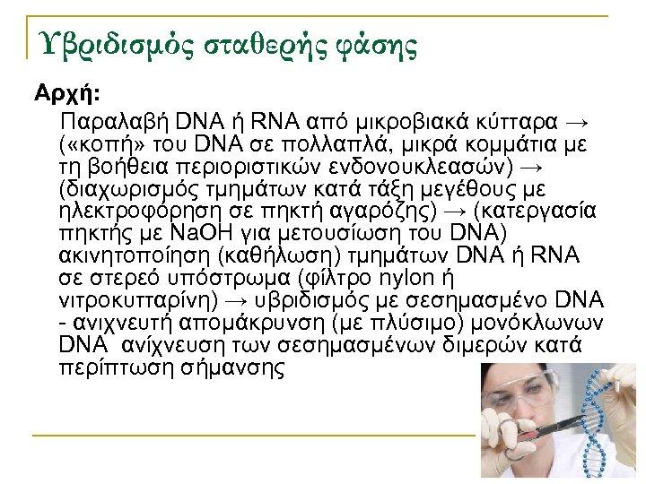 Υβριδισμός σταθερής φάσης Αρχή: Παραλαβή DNA ή RNA από μικροβιακά κύτταρα → ( «κοπή»