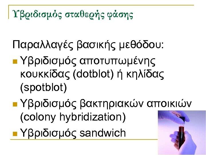 Υβριδισμός σταθερής φάσης Παραλλαγές βασικής μεθόδου: n Υβριδισμός αποτυπωμένης κουκκίδας (dotblot) ή κηλίδας (spotblot)
