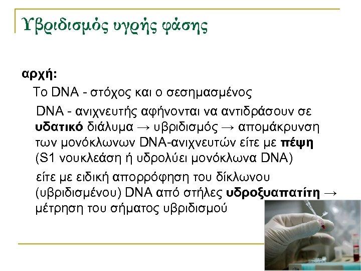 Υβριδισμός υγρής φάσης αρχή: Το DNA - στόχος και ο σεσημασμένος DNA - ανιχνευτής